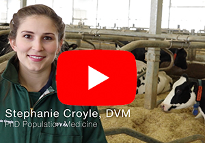 Thumbnail to link Youtube video of Stephanie Croyle, PhD Population Medicine