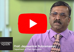 Video placeholder to show a Youtube video of Prof. Jayasankar Subramanian