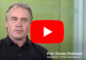 Professor Darren Robinson, U of G screen shot of video interview linking to youtube
