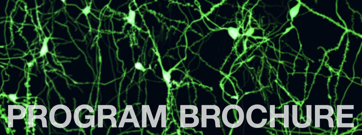 Collaborative Specialization in Neuroscience at U of Guelph - Link to brochure