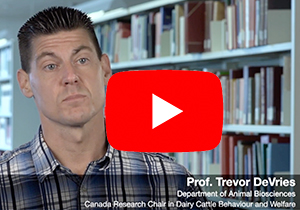Screenshot of video interview with Prof. Trevor DeVries