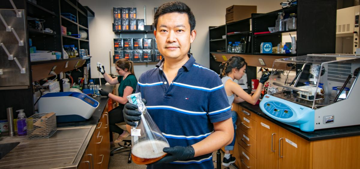 UofG Molecular & Cellular Biology Professor Wei Zhang in his lab