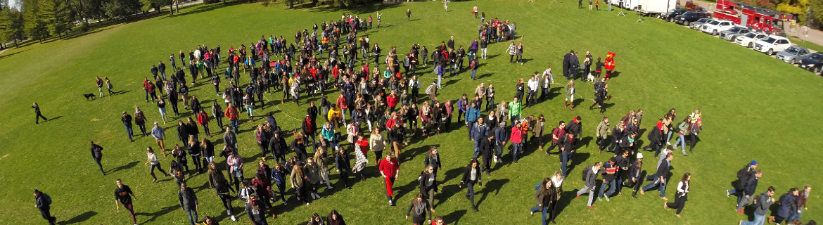 view from above students on Johnston green