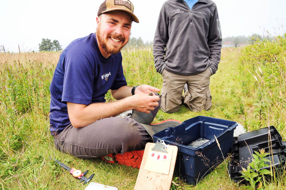 Male student in the field banding birds